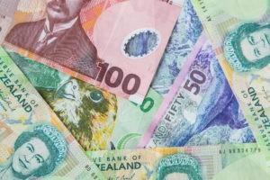 closeup shot of kiwi dollar