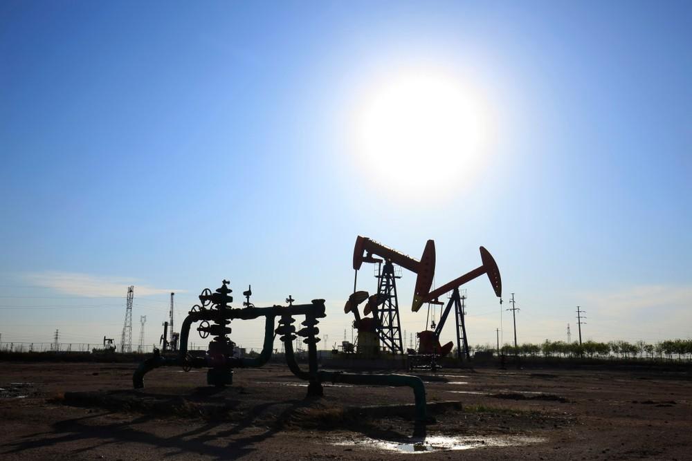 Wibest – Oil and Petroleum: Crude oil pumpjacks.