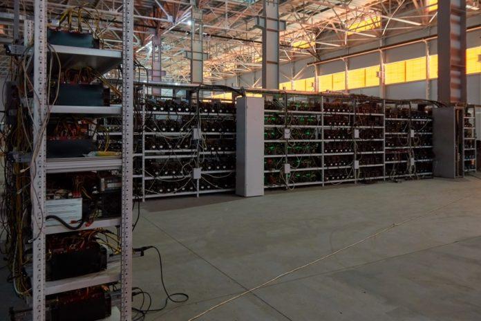 Crypto community and Bitcoin halving