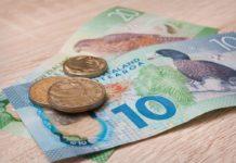New Zealand Dollar fell against U.S. dollar. Euro stays low