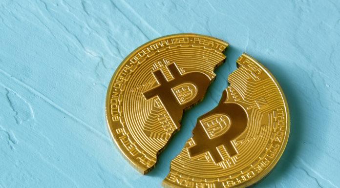 The Bitcoin Collapse, crypto