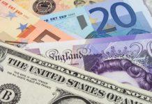 u.s. dollar and euro