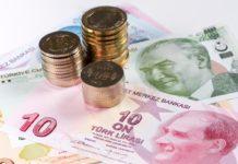 Erdogan's Decisions Continue to Affect the Turkish Lira
